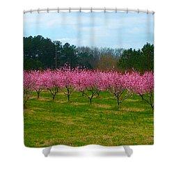 Peach Tree Grove By Jan Marvin Shower Curtain