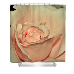 Peaches And Cream Shower Curtain by Kaye Menner