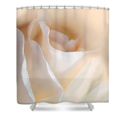 Peaches And Cream Rose Flower Shower Curtain by Jennie Marie Schell