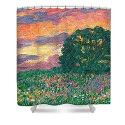 Peachy Sunset Shower Curtain by Kendall Kessler