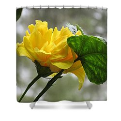Peachy Yellow Surprise Shower Curtain
