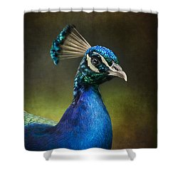 Shower Curtain featuring the photograph Peacock by Ann Lauwers
