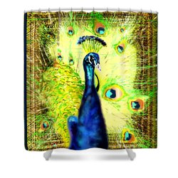 Shower Curtain featuring the drawing Peacock by Daniel Janda