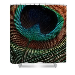 Peacock Feather Shower Curtain by Jerry Fornarotto