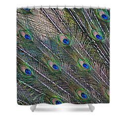 Peacock Feathers Abstract Shower Curtain by Eti Reid