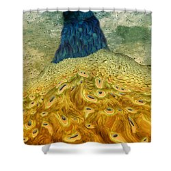 Peacock Shower Curtain by Jack Zulli