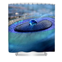 Peacock Potion Shower Curtain
