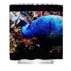 Peacock Profile Shower Curtain