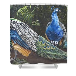 Peacocks In The Garden Shower Curtain by Phyllis Beiser