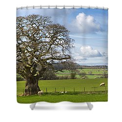 Peak District Tree Shower Curtain