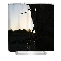 Shower Curtain featuring the photograph Pealing by David S Reynolds