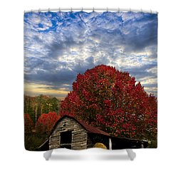 Pear Trees On The Farm Shower Curtain by Debra and Dave Vanderlaan