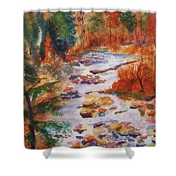 Pebbled Creek Shower Curtain by Ellen Levinson