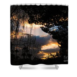 Peek A Boo Sunset Shower Curtain by Janice Westerberg