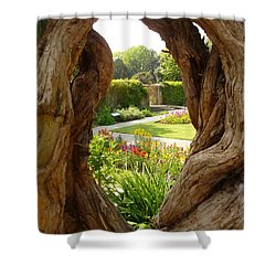 Shower Curtain featuring the photograph Peek At The Garden by Vicki Spindler
