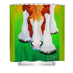 Peek Shower Curtain