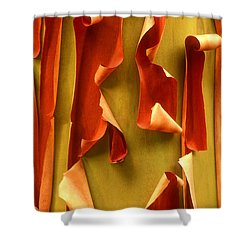 Peeling Bark Pacific Madrone Tree Washington Shower Curtain by Dave Welling