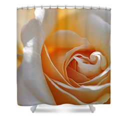 Shower Curtain featuring the photograph Pegasus Rose  by Sabine Edrissi