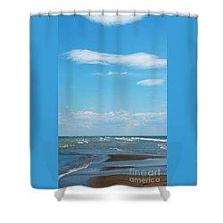 Pelee Shower Curtain by Ann Horn
