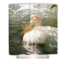 Pelican Bath Time Shower Curtain