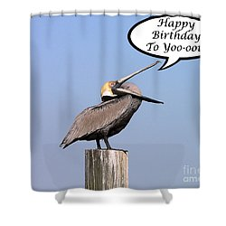 Pelican Birthday Card Shower Curtain by Al Powell Photography USA