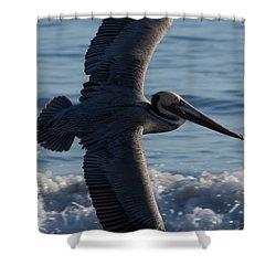 Pelican Flight Shower Curtain