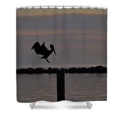 Pelican Landing Shower Curtain