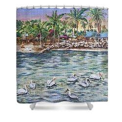 Pelican Medley Shower Curtain