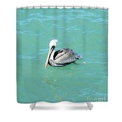 Pelican Shower Curtain by Oksana Semenchenko