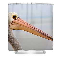 Pelican Profile Shower Curtain by Mike  Dawson