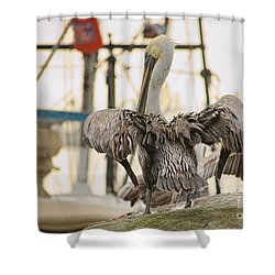 Pelican Strut Shower Curtain