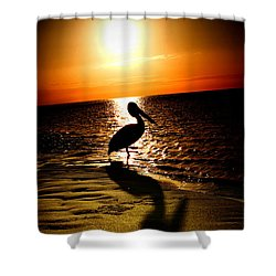 Pelican Sunrise Shower Curtain by Yew Kwang
