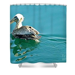 Pelican Swimming Shower Curtain by Clare Bevan