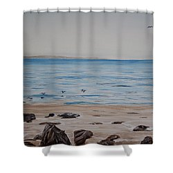 Pelicans At El Capitan Shower Curtain