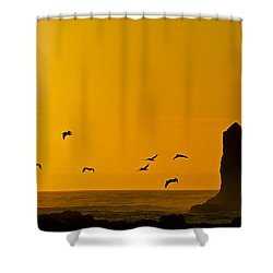 Pelicans On The Wing II Shower Curtain