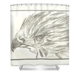 Pencil Drawing Of Hawk Eye Shower Curtain