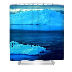 Penguins On Iceberg Shower Curtain by Amanda Stadther