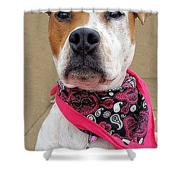 Penny3 Shower Curtain