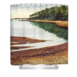 Penobscot Bay Shower Curtain