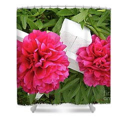Shower Curtain featuring the photograph Peonies Resting On White Fence by Barbara Griffin