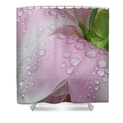 Peony Tears Shower Curtain by Barbara S Nickerson