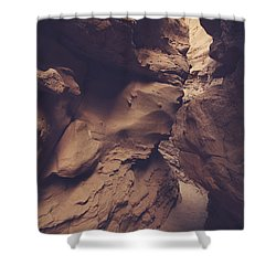 Perception Shower Curtain by Laurie Search