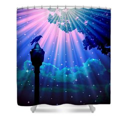 Perched And Watching 7 Shower Curtain by Aurelio Zucco