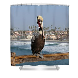 Perched On The Pier Shower Curtain
