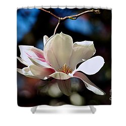 Perfect Bloom Magnolia Shower Curtain