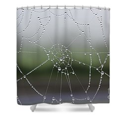 Shower Curtain featuring the photograph Perfect Circles by Vicki Spindler