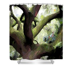 Perfect Climbing Tree  Shower Curtain by Carol Groenen