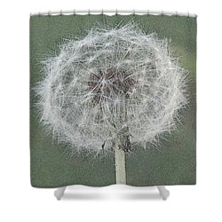 Perfect Dandelion Shower Curtain