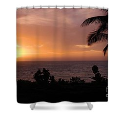 Perfect End To A Day Shower Curtain by Suzanne Luft