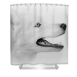 Perfection Shower Curtain by Betty Depee